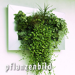 vertical green – pflanzenbild